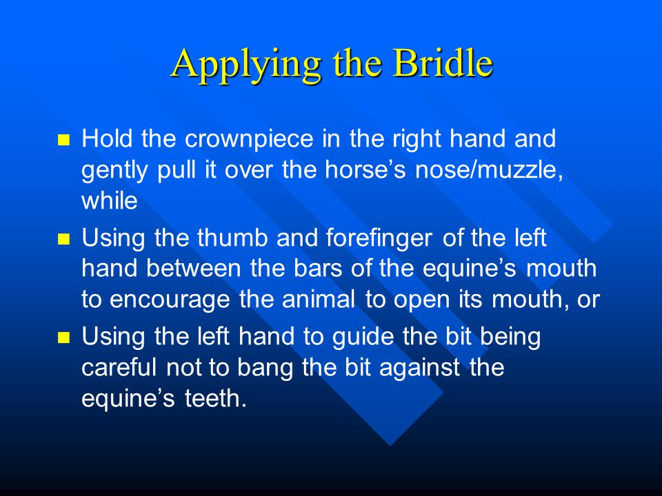 Applying the Bridle Hold the crownpiece in the right hand and gently pull it over the horse's nose/muzzle, while.