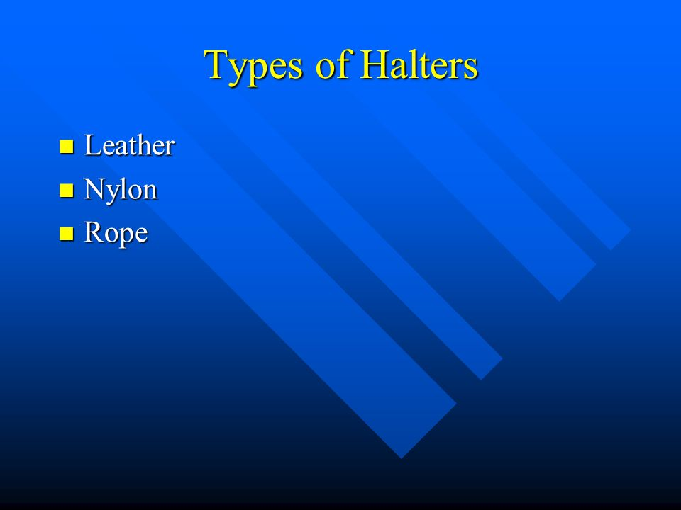 Types of Halters Leather Nylon Rope