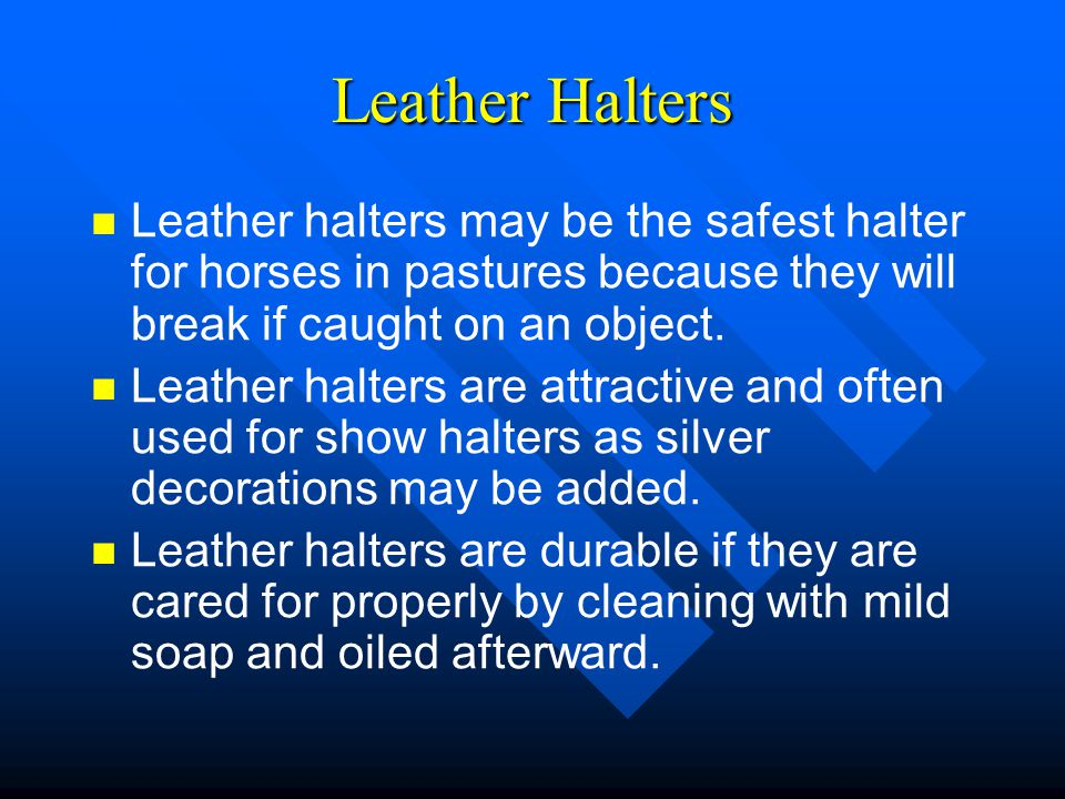 Leather Halters Leather halters may be the safest halter for horses in pastures because they will break if caught on an object.
