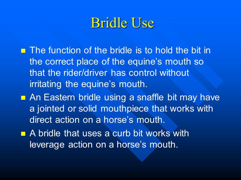Bridle Use