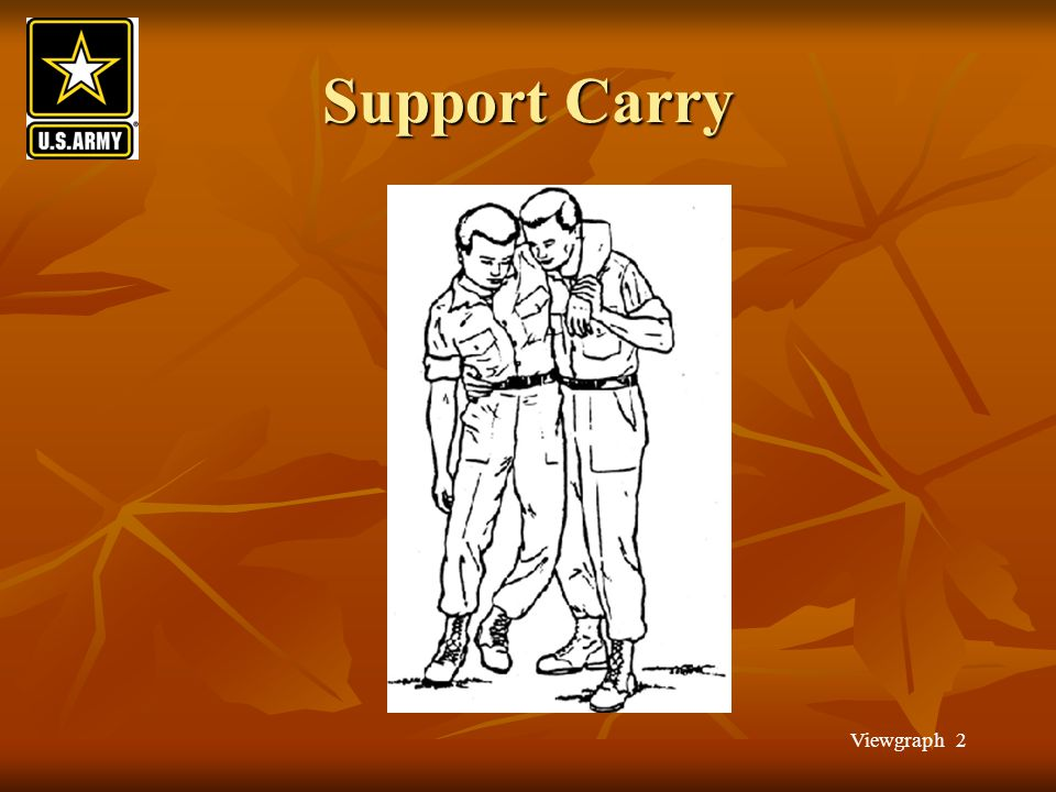 Support Carry