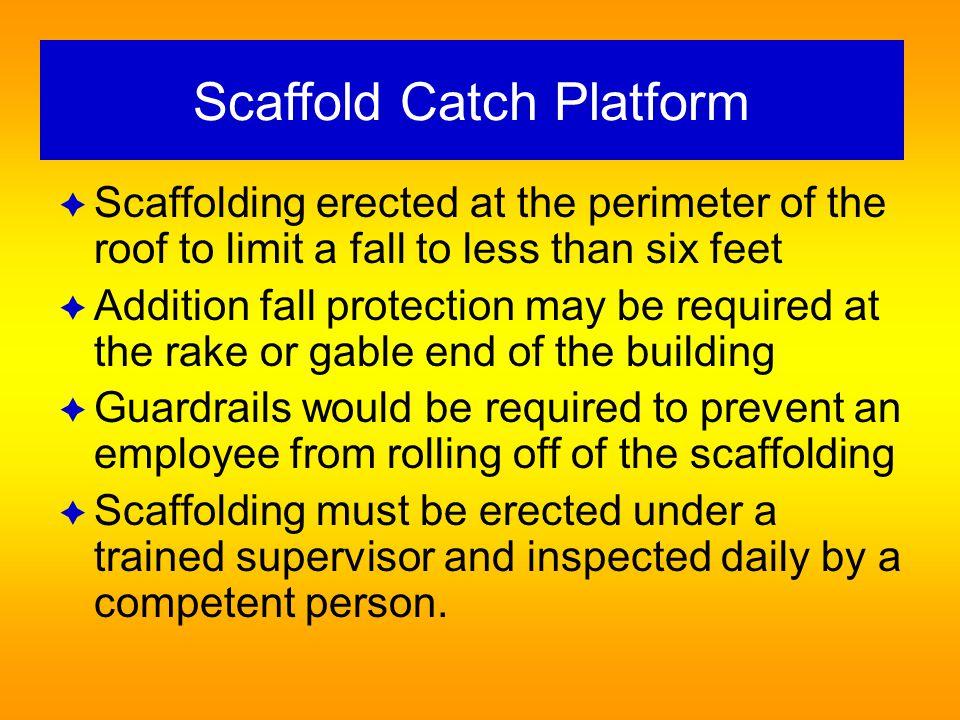 Scaffold Catch Platform