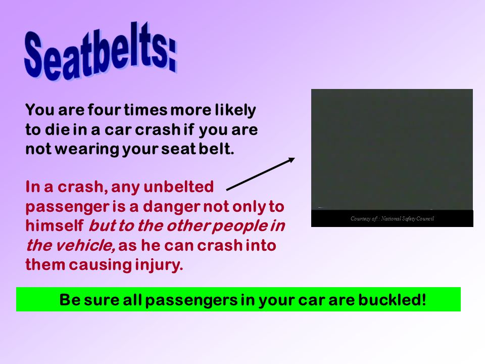 Seatbelts: put in avi unbelted damage video here