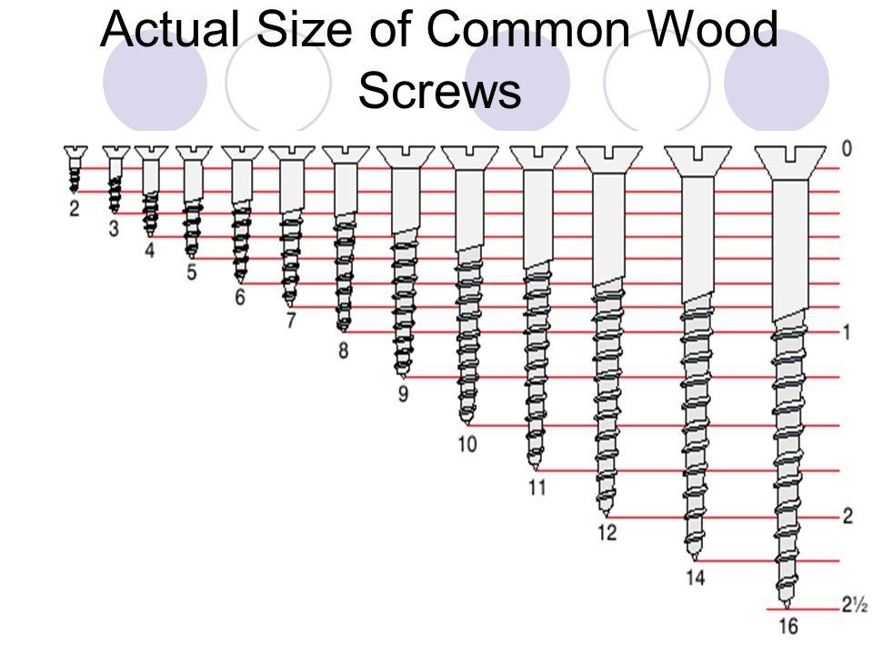 Actual Size of Common Wood Screws
