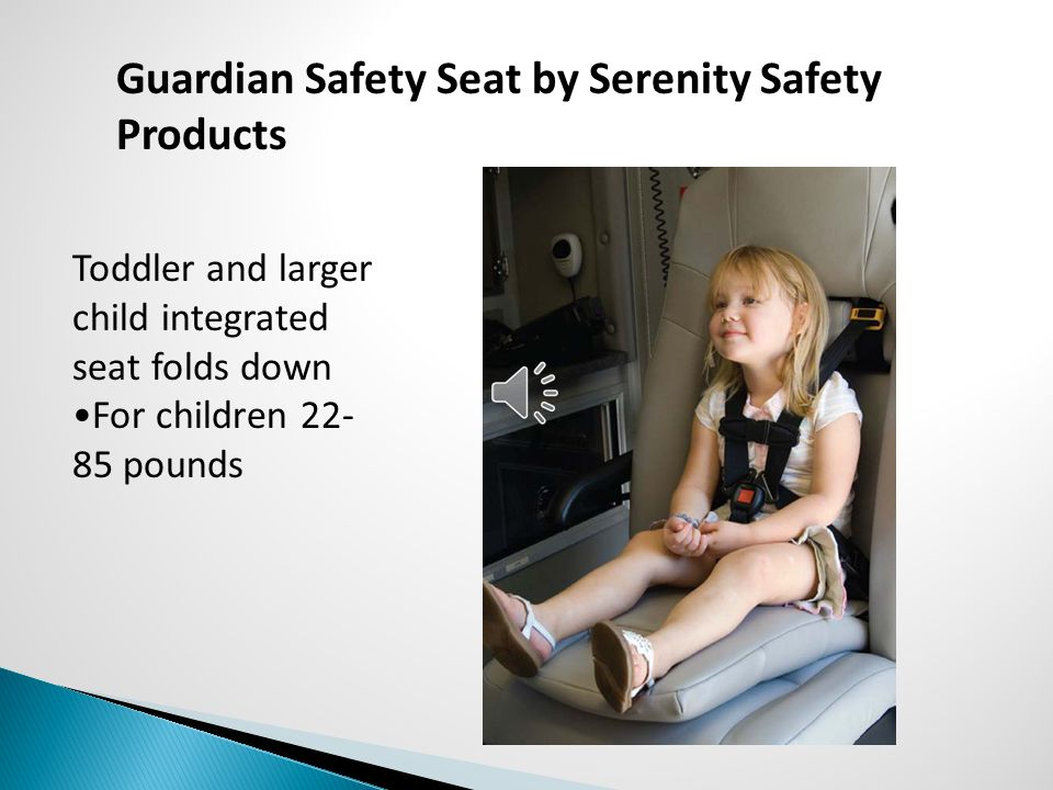 Guardian Safety Seat by Serenity Safety Products