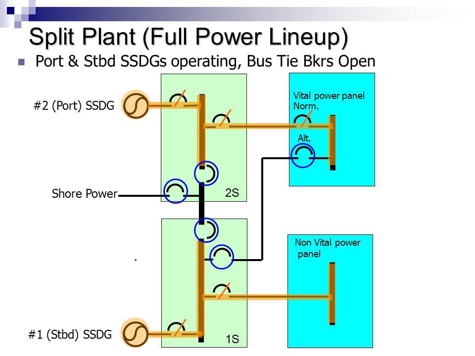 Split Plant (Full Power Lineup)
