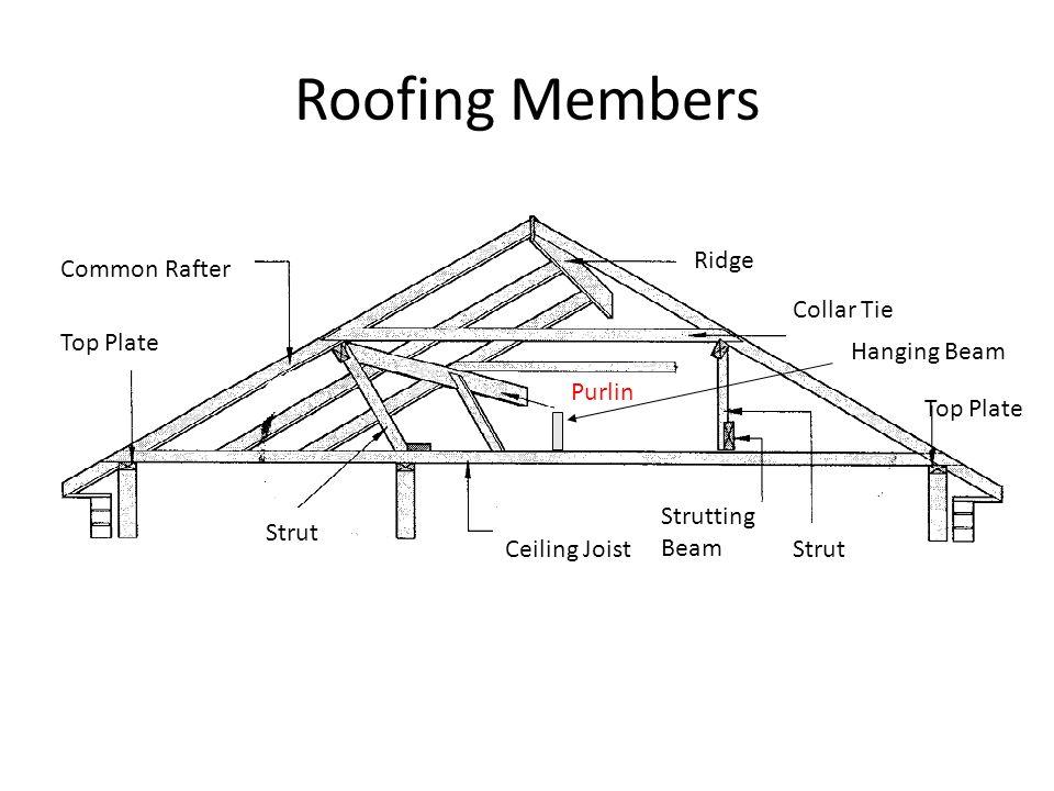 Roofing Members Ridge Common Rafter Collar Tie Top Plate Hanging Beam