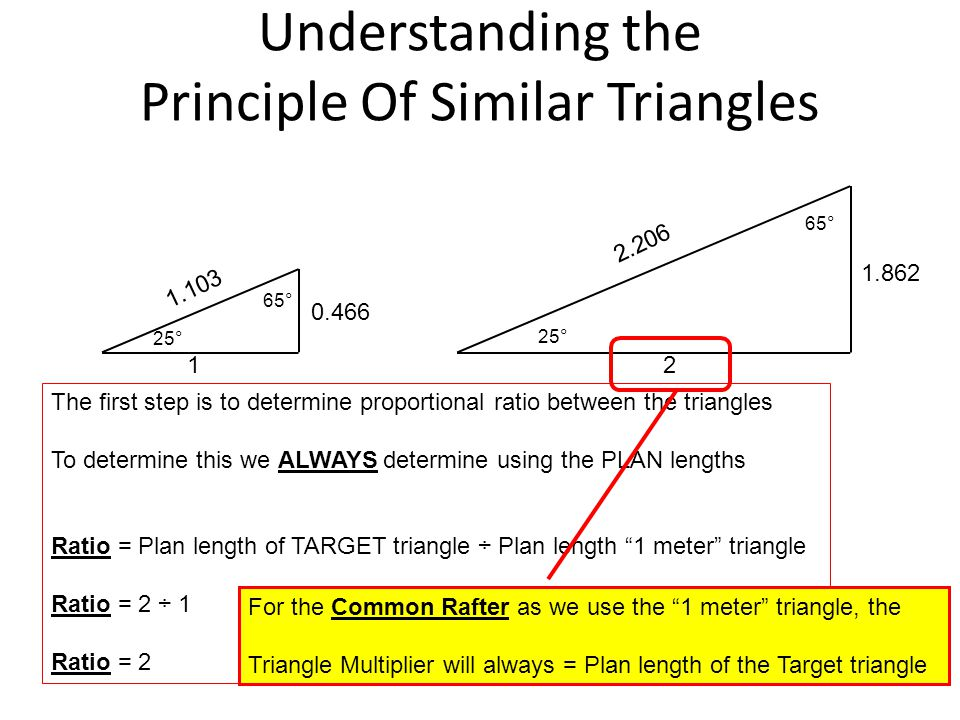 Understanding the Principle Of Similar Triangles