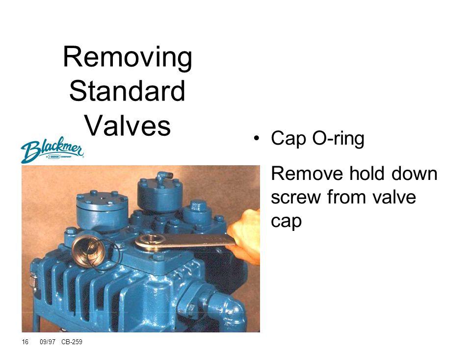 Removing Standard Valves