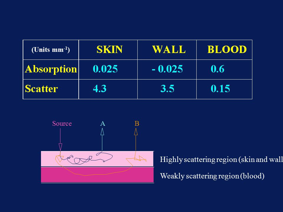 Highly scattering region (skin and wall)