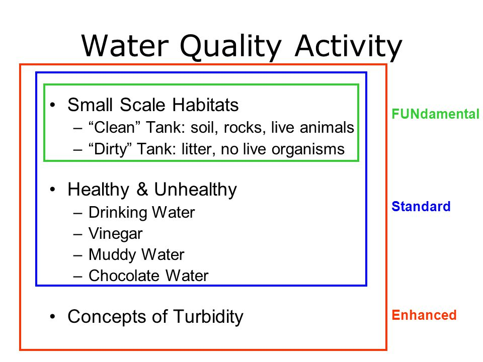 Water Quality Activity