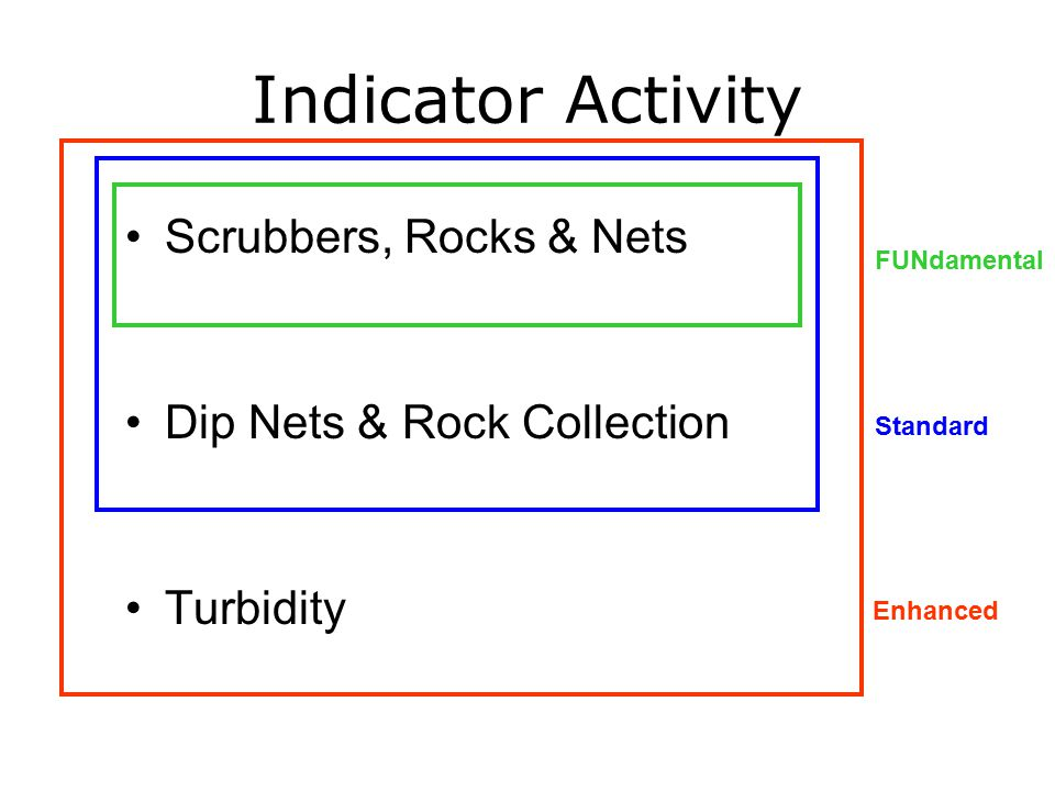 Indicator Activity Scrubbers, Rocks & Nets Dip Nets & Rock Collection