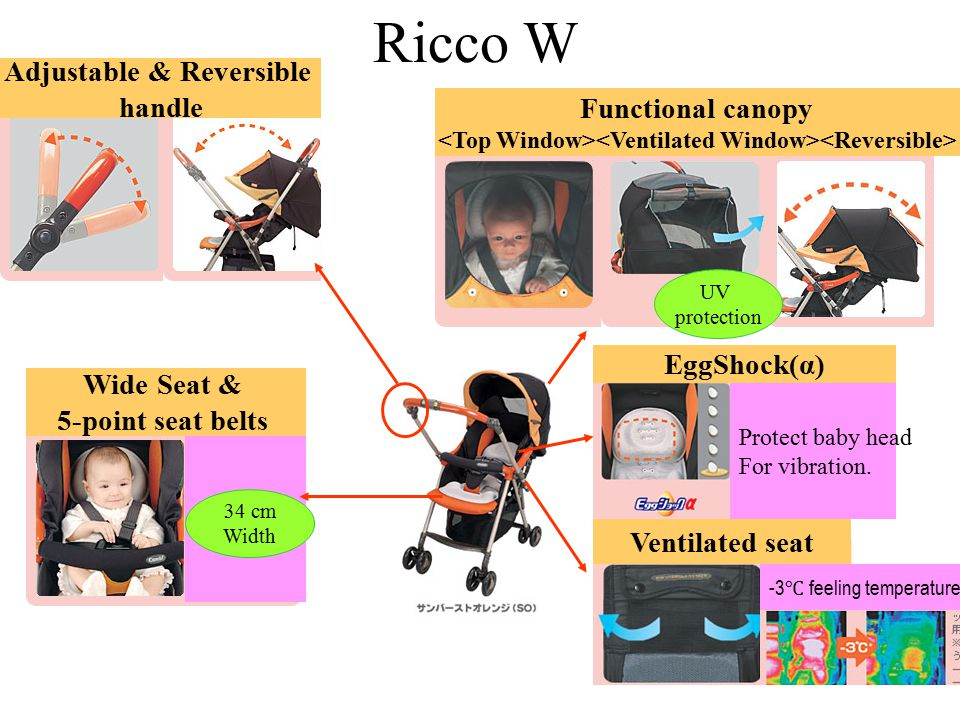 Ricco W Adjustable & Reversible handle Functional canopy EggShock(α)