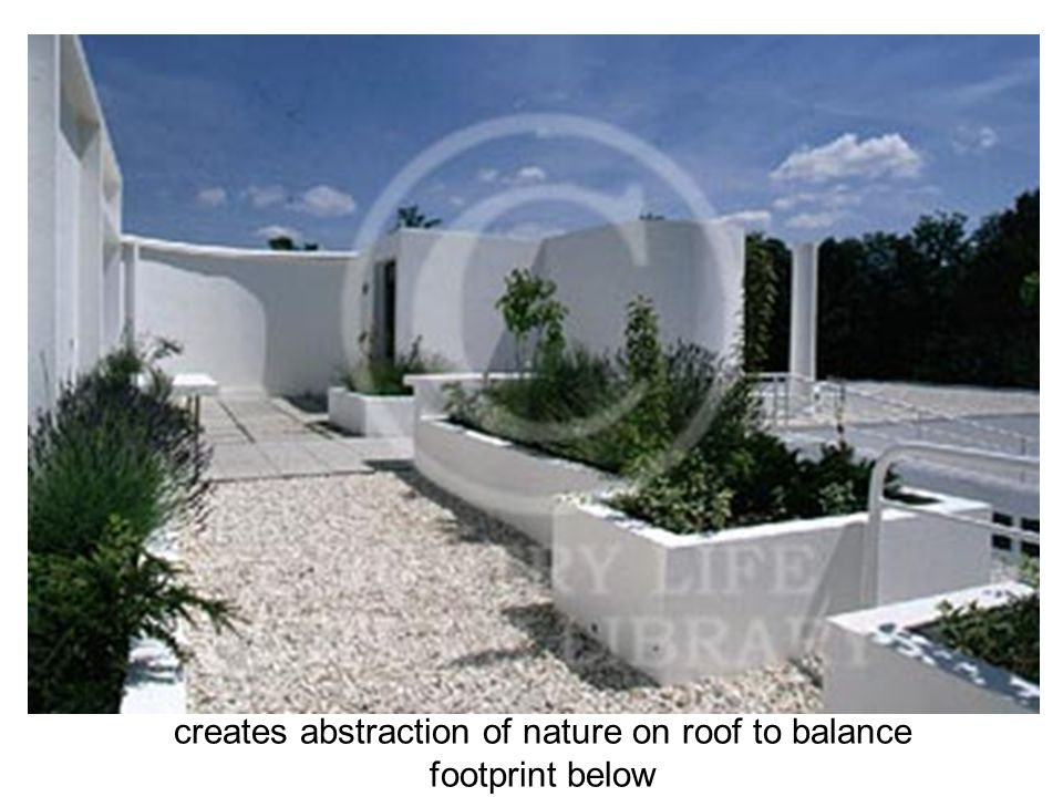 creates abstraction of nature on roof to balance footprint below