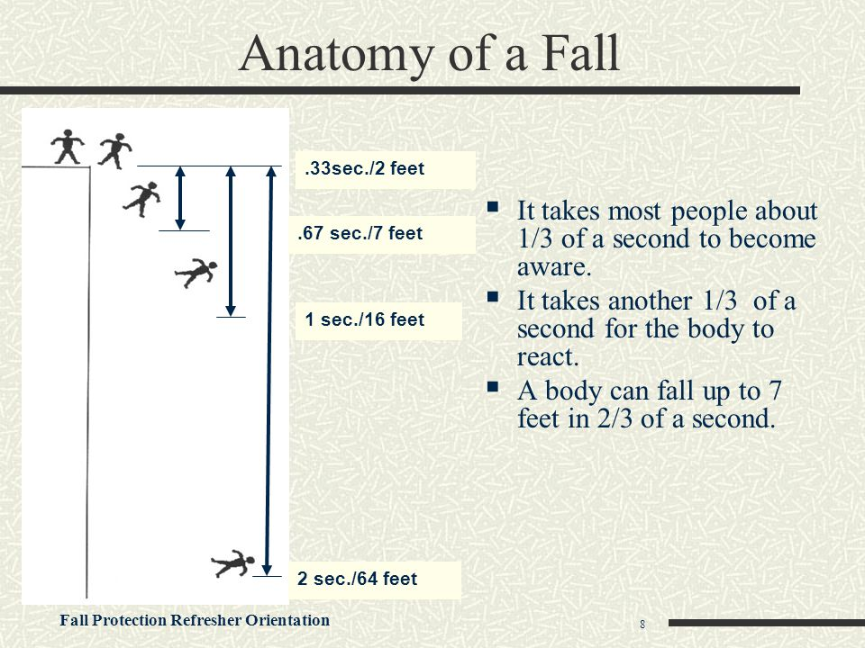 Anatomy of a Fall .33sec./2 feet. It takes most people about 1/3 of a second to become aware.