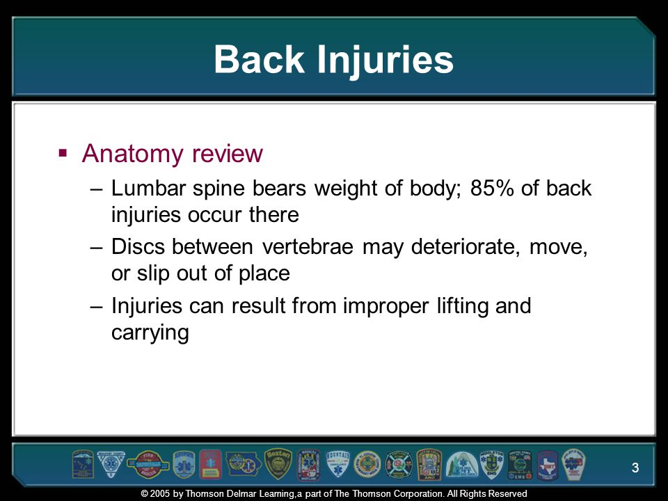 Back Injuries Anatomy review