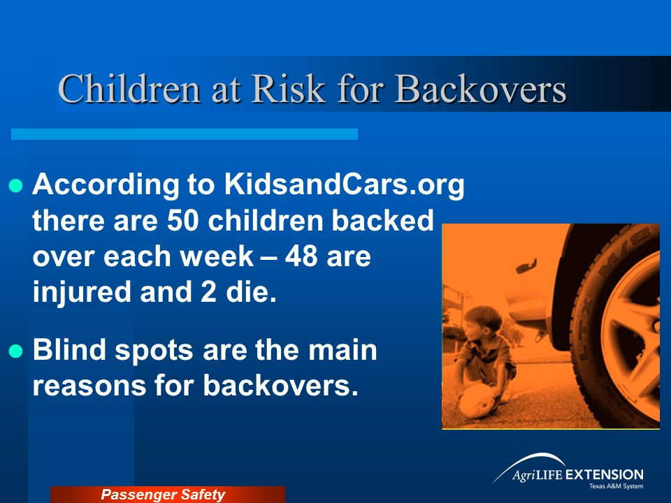 Children at Risk for Backovers