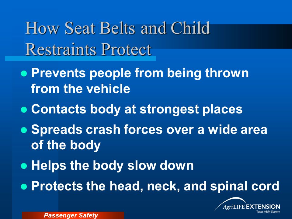 How Seat Belts and Child Restraints Protect