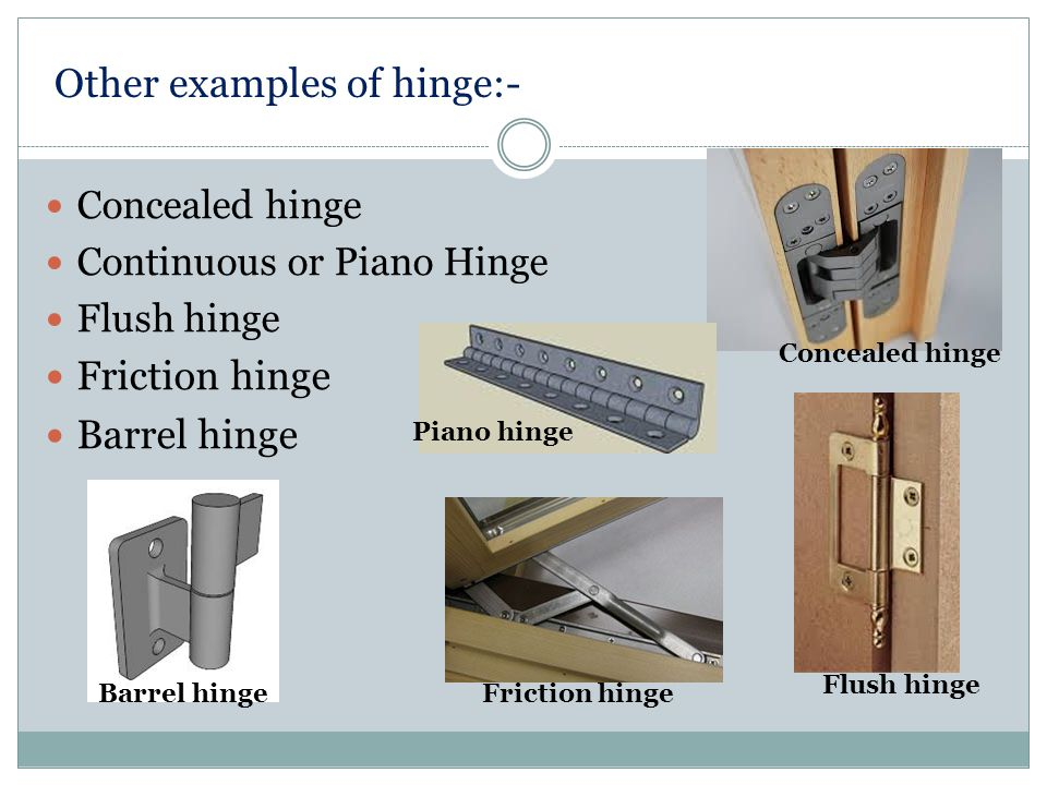 Other examples of hinge:-