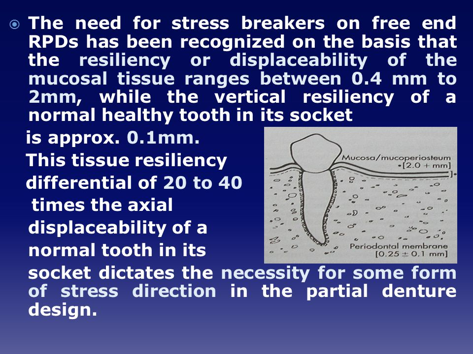 The need for stress breakers on free end RPDs has been recognized on the basis that the resiliency or displaceability of the mucosal tissue ranges between 0.4 mm to 2mm, while the vertical resiliency of a normal healthy tooth in its socket