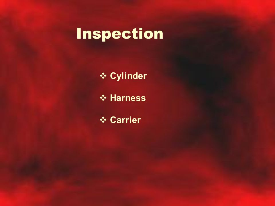 Inspection Cylinder Harness Carrier