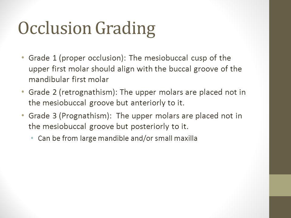 Occlusion Grading