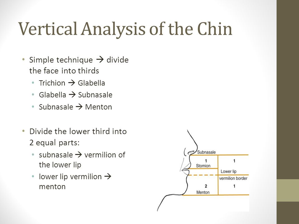 Vertical Analysis of the Chin