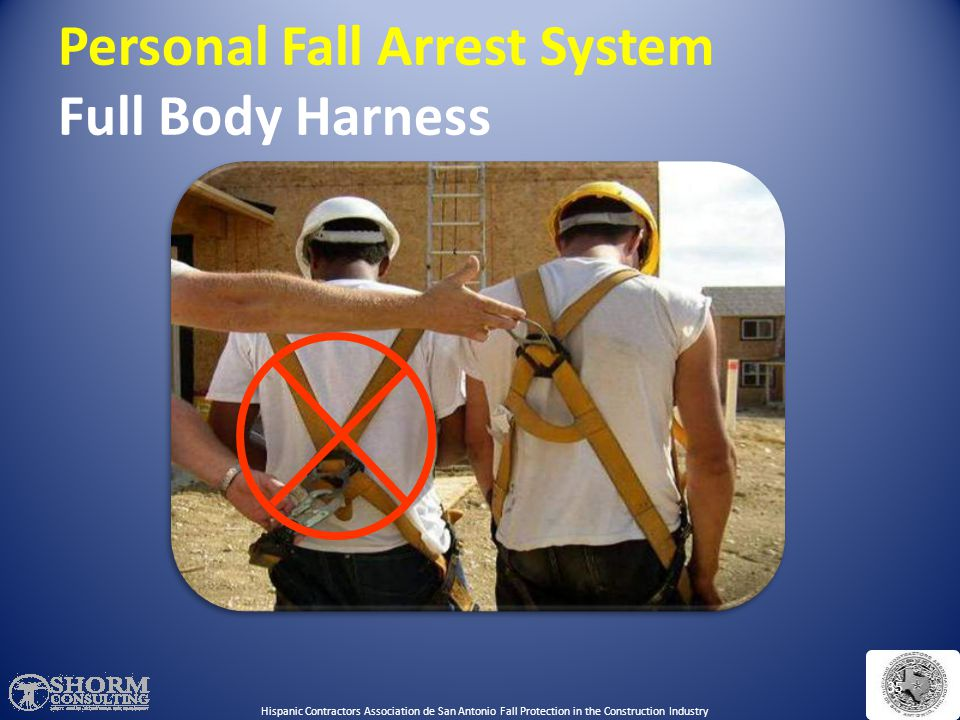 Personal Fall Arrest System Full Body Harness