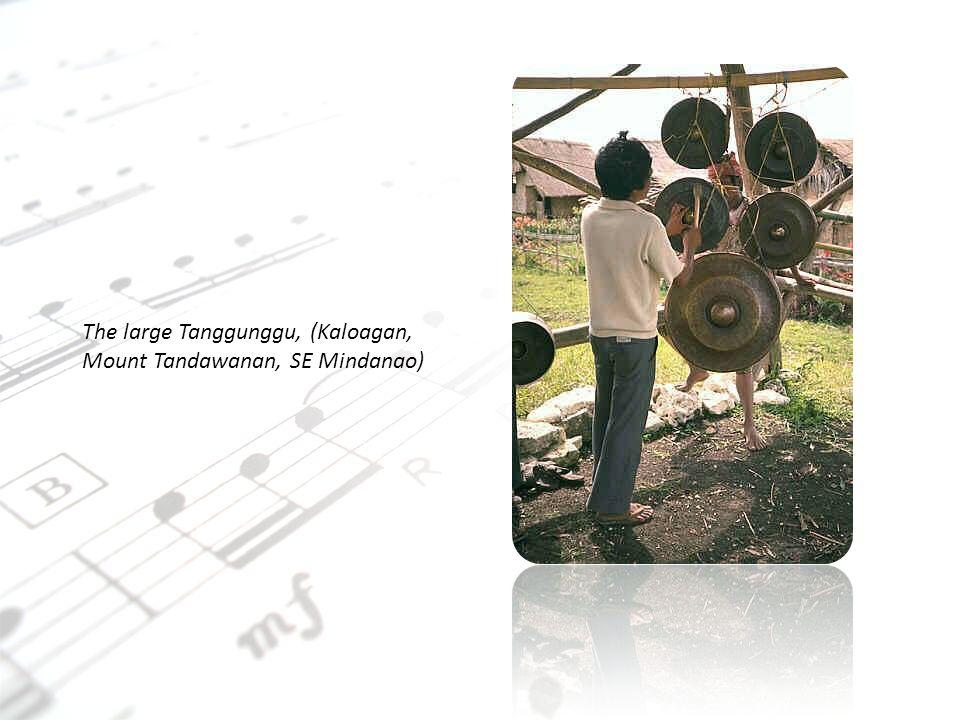 The large Tanggunggu, (Kaloagan, Mount Tandawanan, SE Mindanao)