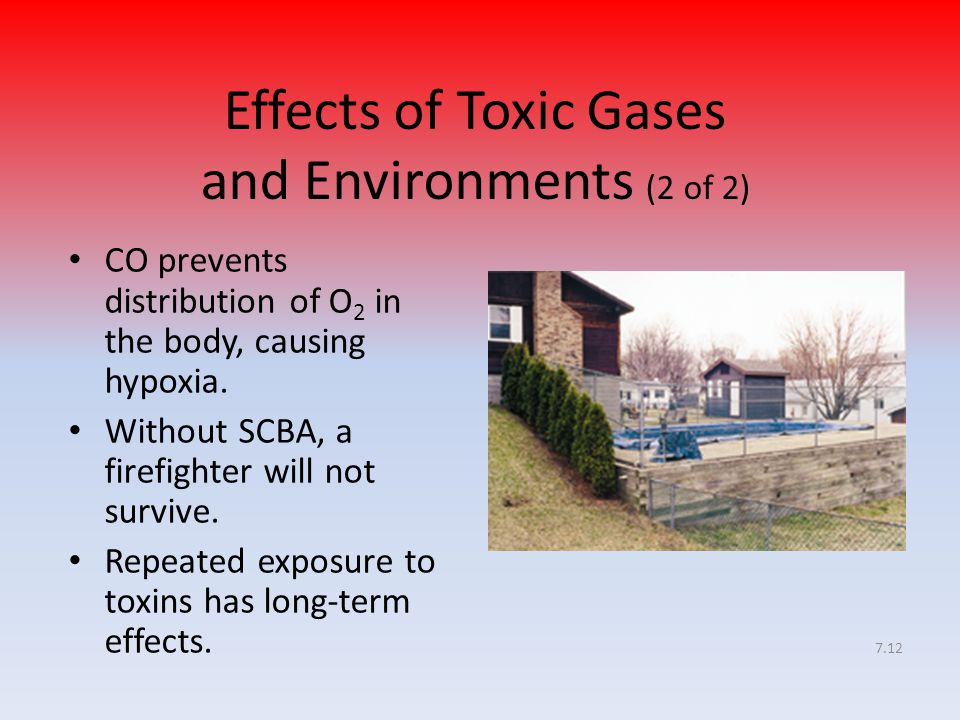 Effects of Toxic Gases and Environments (2 of 2)