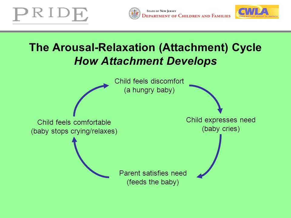 The Arousal-Relaxation (Attachment) Cycle How Attachment Develops