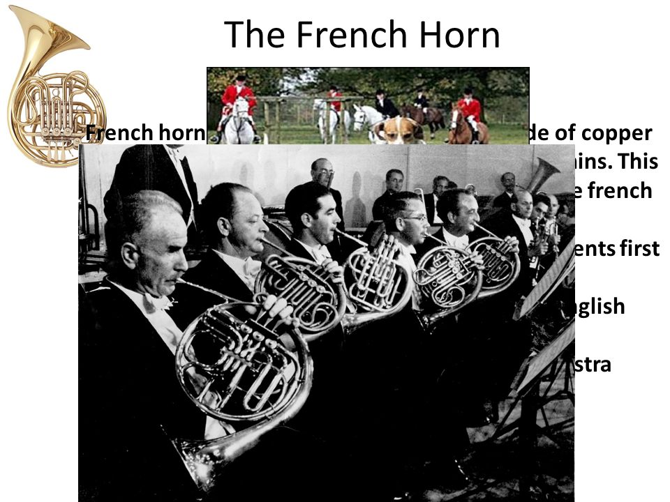 The French Horn