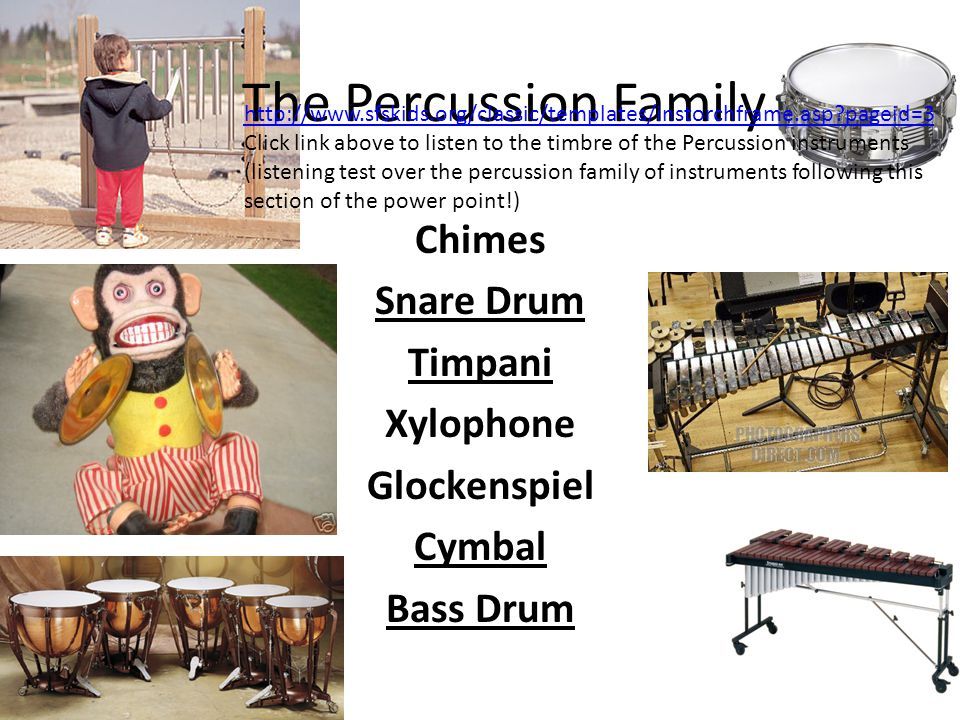 Chimes Snare Drum Timpani Xylophone Glockenspiel Cymbal Bass Drum