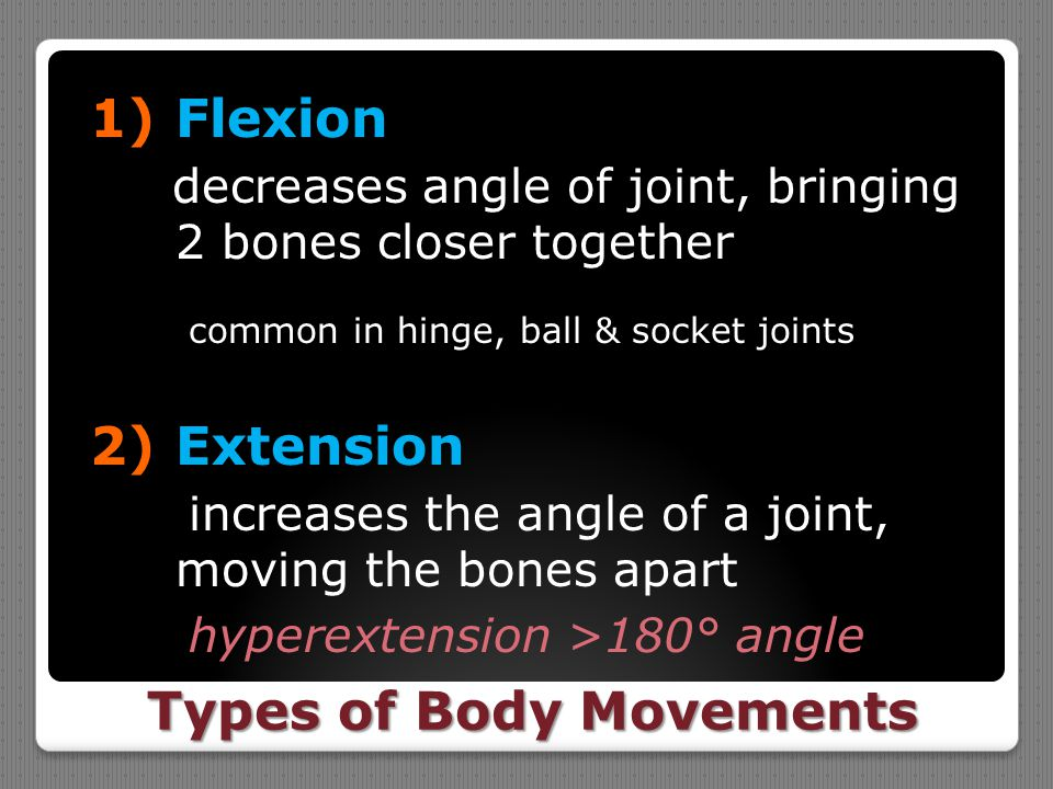 Types of Body Movements