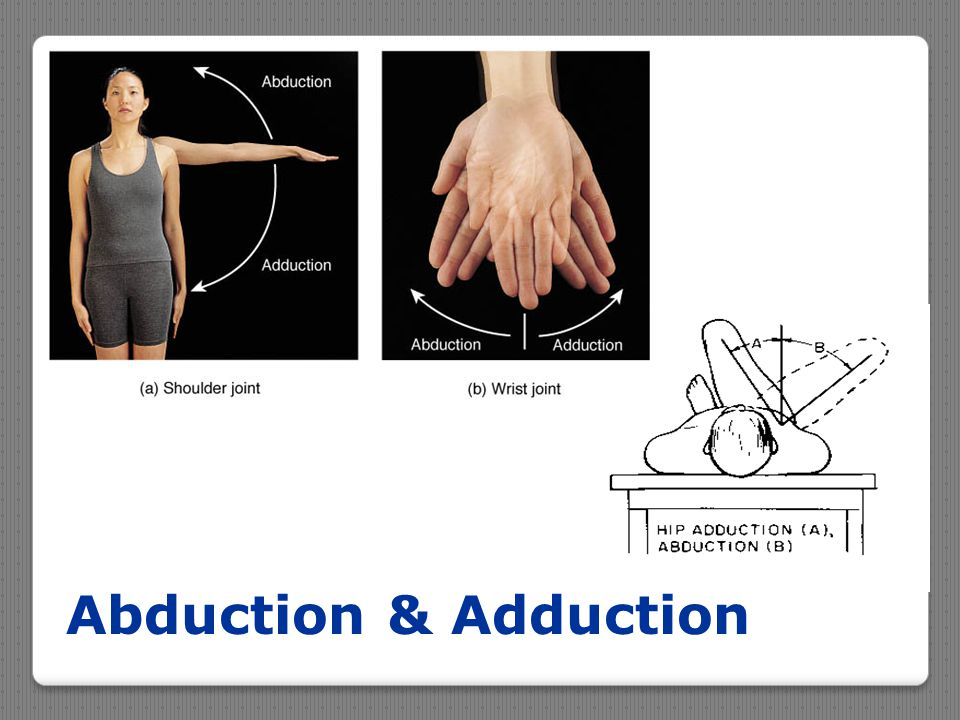 Abduction & Adduction