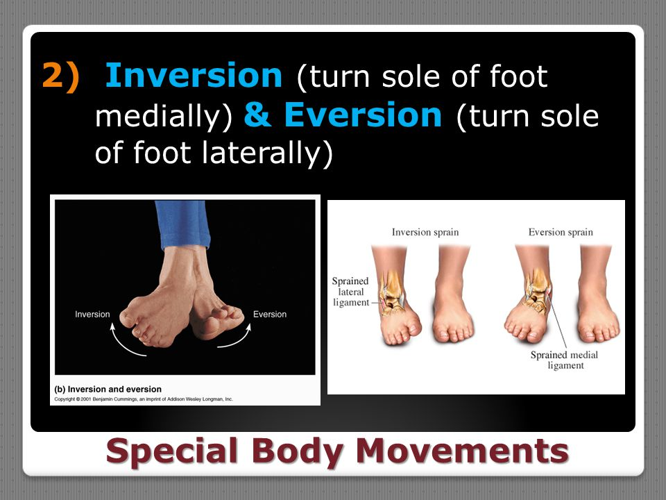Special Body Movements