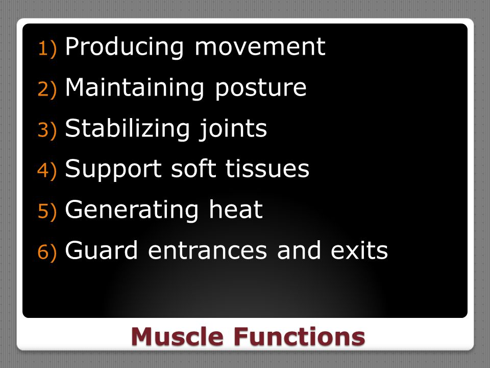 Producing movement Maintaining posture. Stabilizing joints. Support soft tissues. Generating heat.
