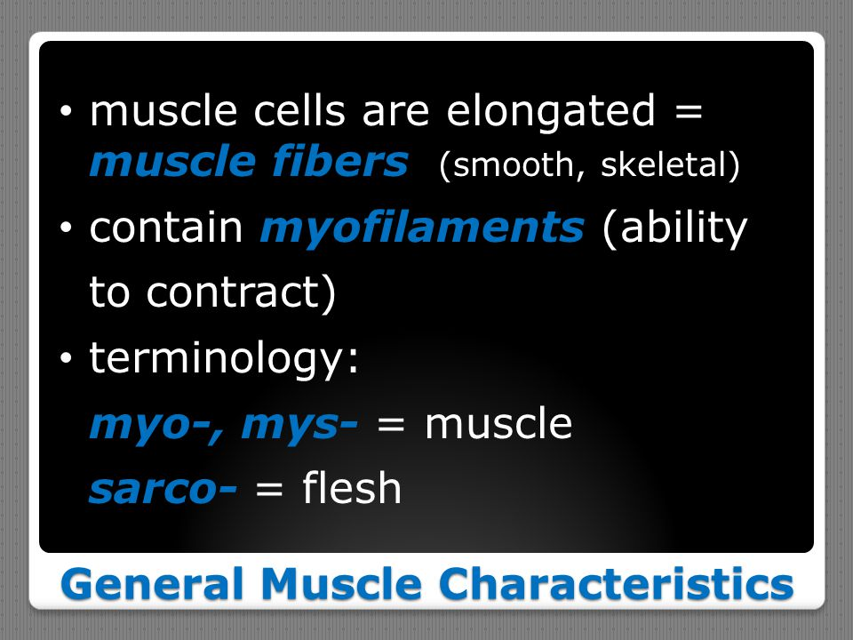 General Muscle Characteristics