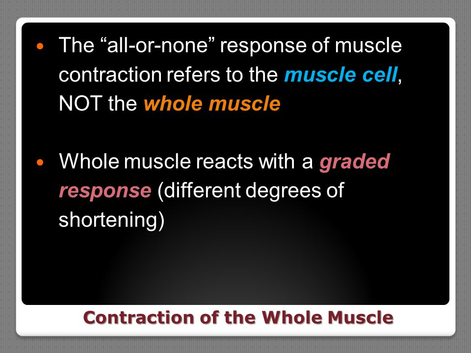 Contraction of the Whole Muscle