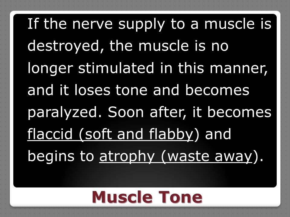 If the nerve supply to a muscle is destroyed, the muscle is no longer stimulated in this manner, and it loses tone and becomes paralyzed. Soon after, it becomes flaccid (soft and flabby) and begins to atrophy (waste away).
