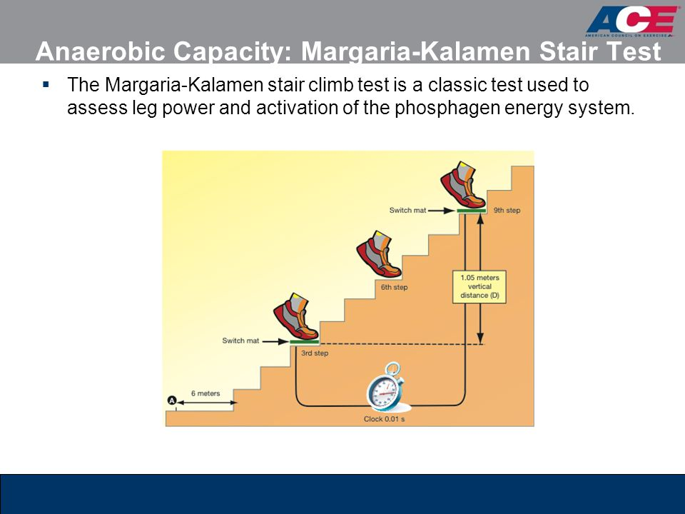 Anaerobic Capacity: Margaria-Kalamen Stair Test