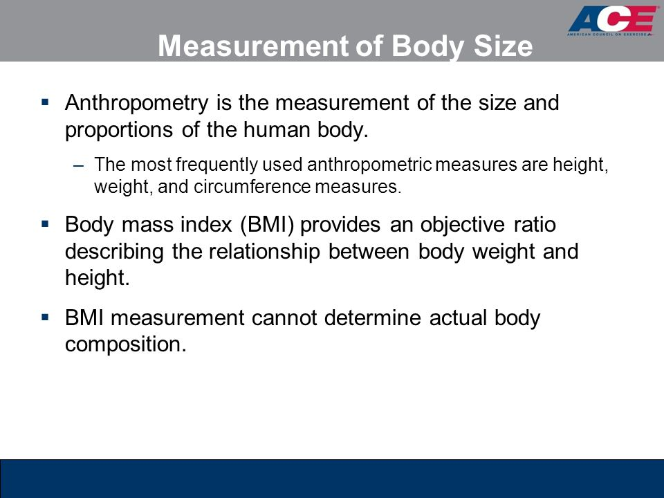 Measurement of Body Size
