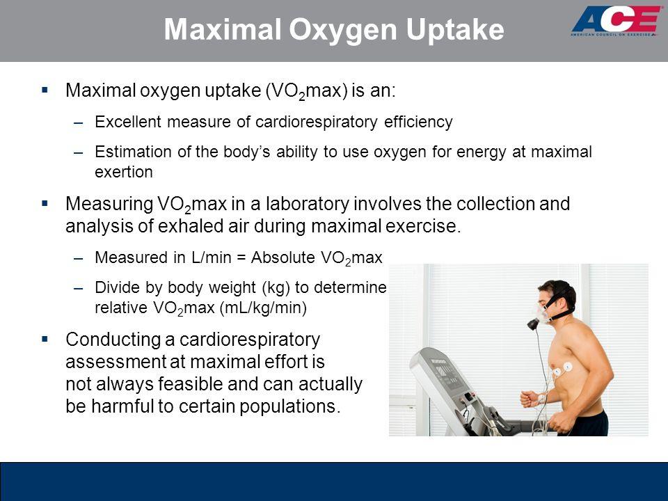 Maximal Oxygen Uptake Maximal oxygen uptake (VO2max) is an: