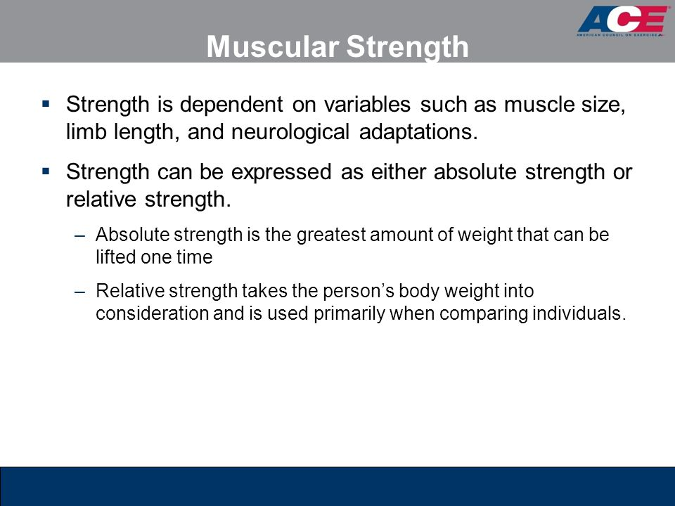 Muscular Strength Strength is dependent on variables such as muscle size, limb length, and neurological adaptations.