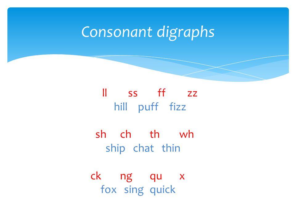 Consonant digraphs ll ss ff zz hill puff fizz sh ch th wh ship chat thin ck ng qu x fox sing quick