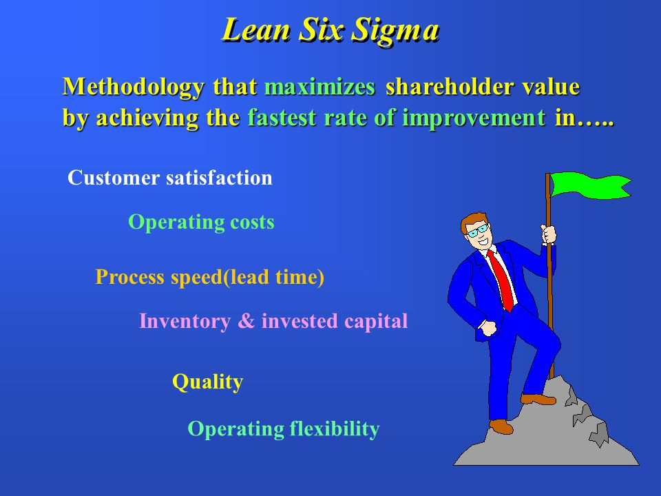 Lean Six Sigma Methodology that maximizes shareholder value