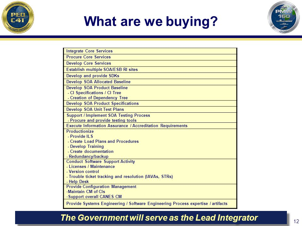 The Government will serve as the Lead Integrator