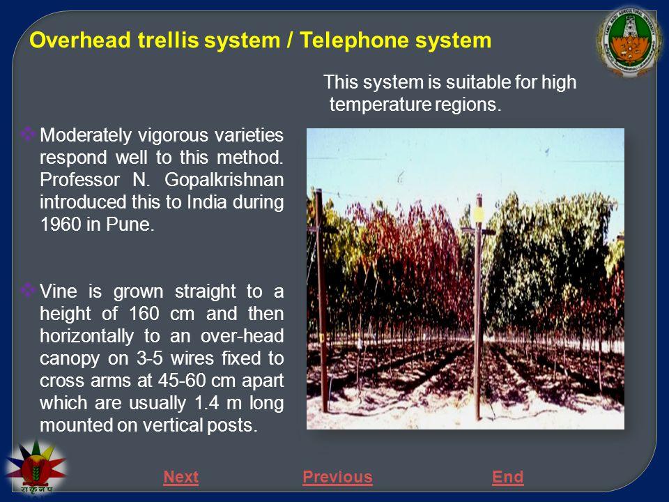 Overhead trellis system / Telephone system