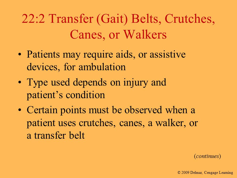 22:2 Transfer (Gait) Belts, Crutches, Canes, or Walkers