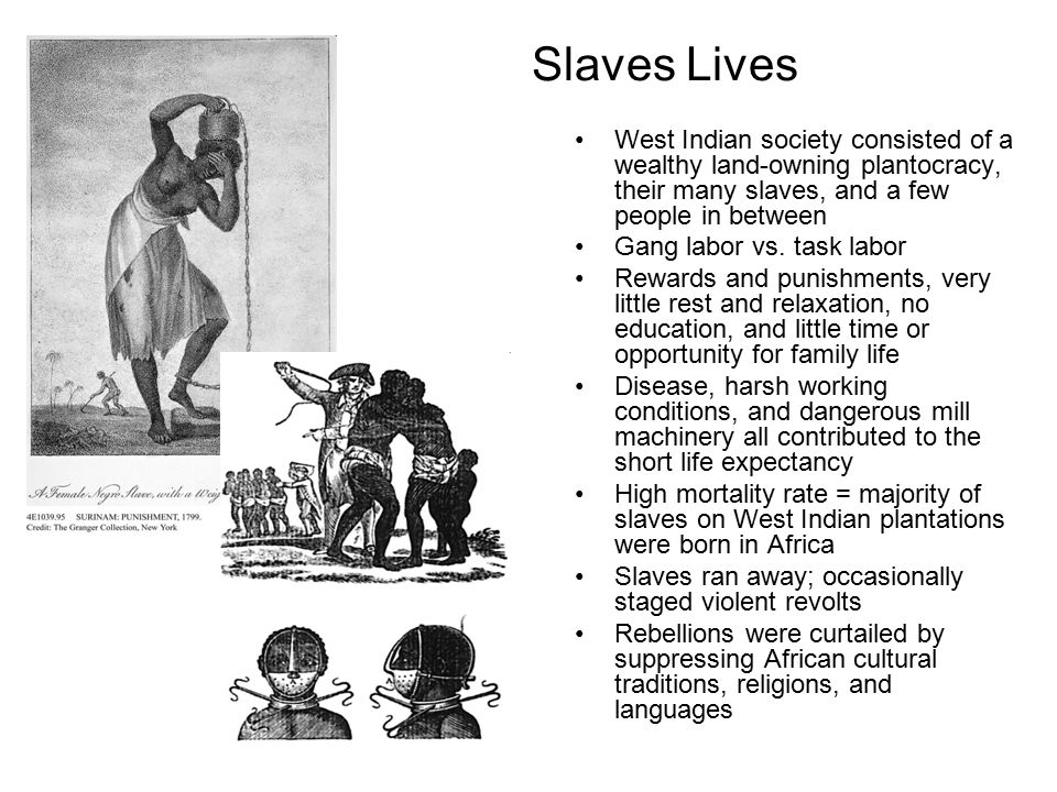 Slaves Lives West Indian society consisted of a wealthy land-owning plantocracy, their many slaves, and a few people in between.